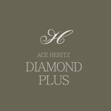ACE HERITZ DIAMOND PLUS